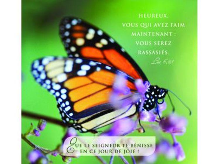 Carte double  Communion Papillon